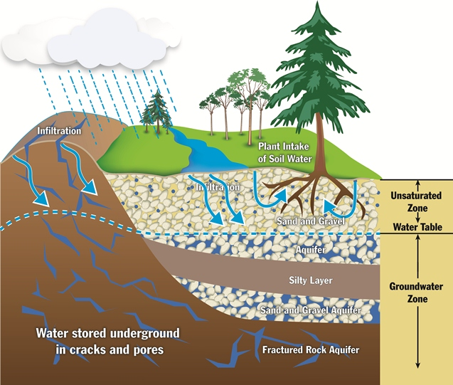 Diagram of groundwater and surface water interactions.