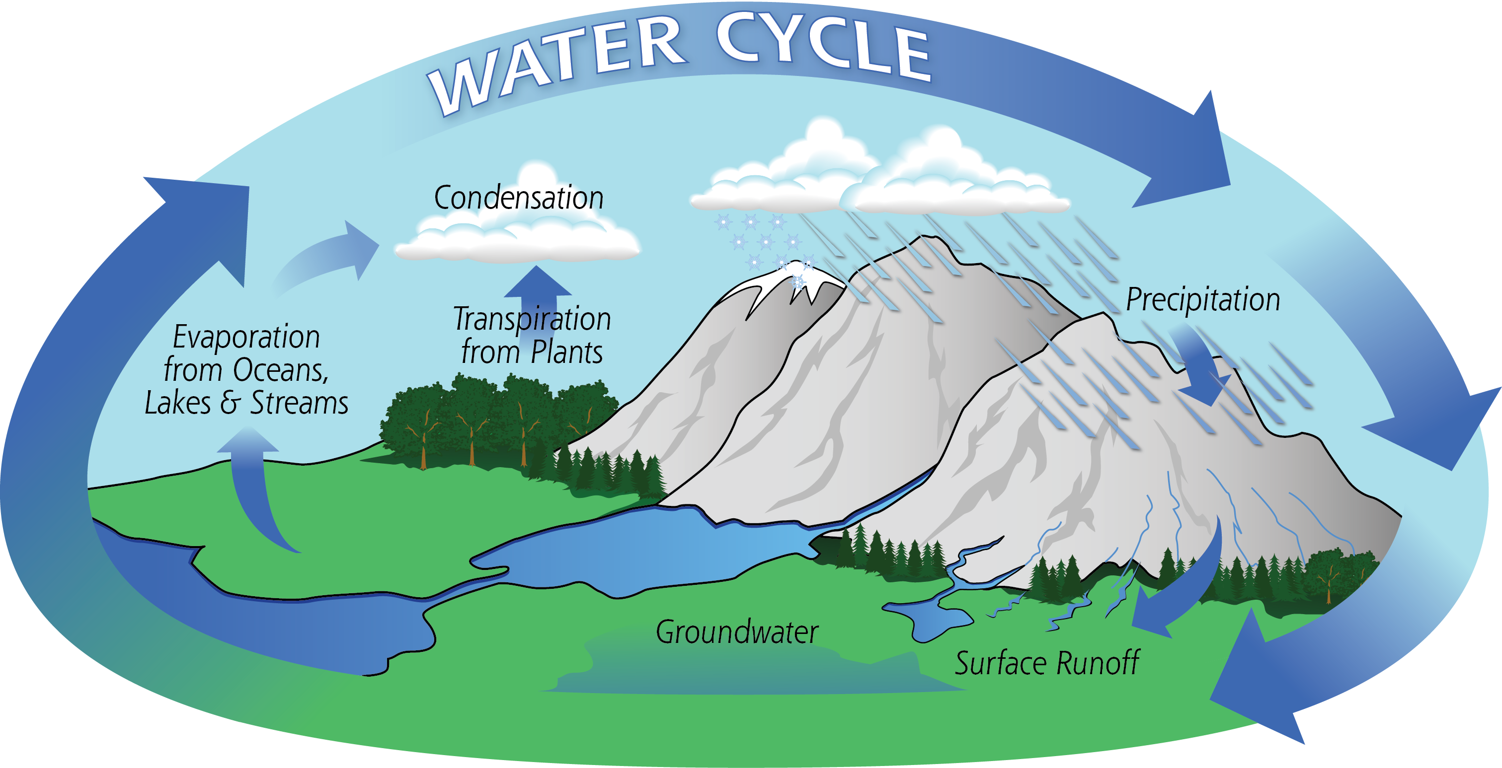 Diagram of the water cycle incorporating mountains to show their important for Colorado.