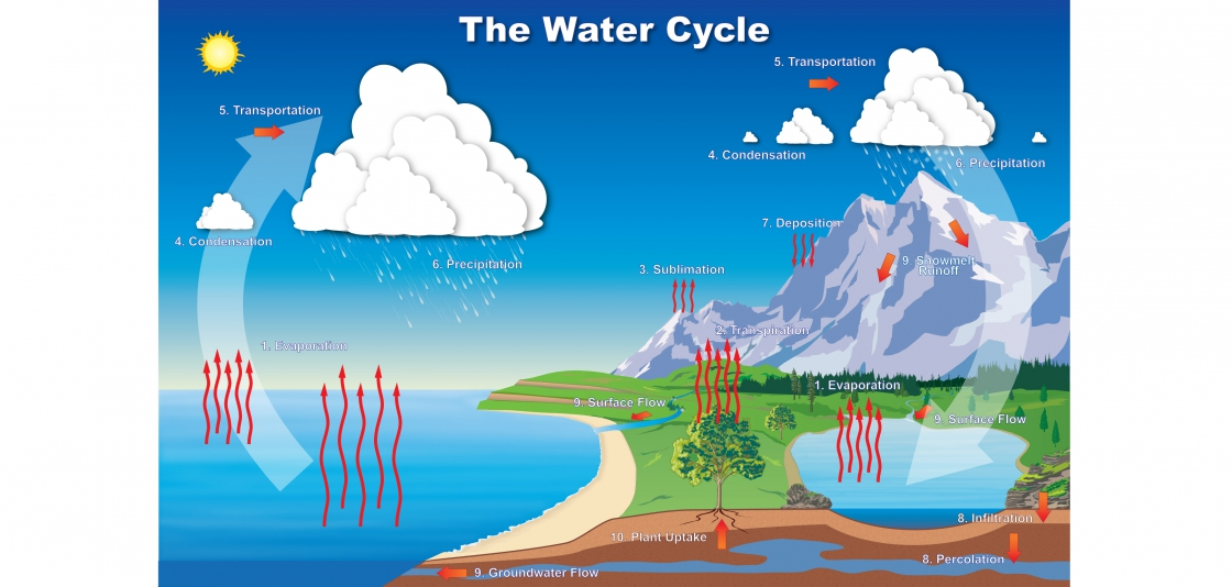 Diagram of the water cycle.